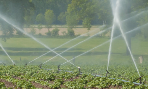 Irrigation and Water Features